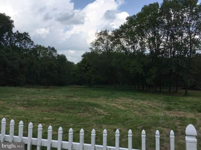 9755 Easton Road, KINTNERSVILLE, PA 18930 (#PABU488310) :: Linda Dale Real Estate Experts