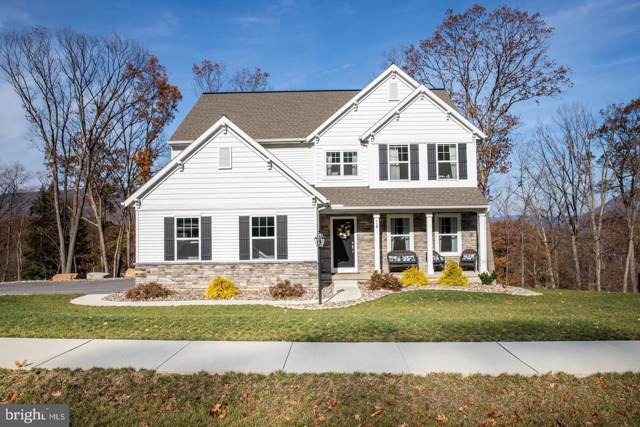 115 Kittochtinny Drive, MARYSVILLE, PA 17053 (#PAPY101770) :: Iron Valley Real Estate