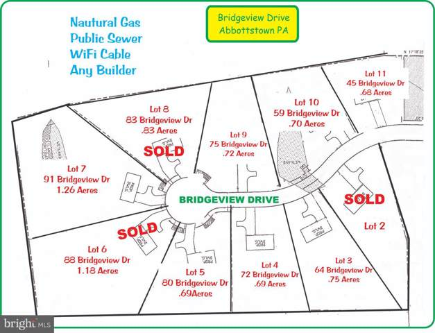 45 Bridgeview Drive, ABBOTTSTOWN, PA 17301 (#PAAD110268) :: Liz Hamberger Real Estate Team of KW Keystone Realty