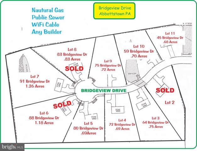 75 Bridgeview Drive, ABBOTTSTOWN, PA 17301 (#PAAD110282) :: Liz Hamberger Real Estate Team of KW Keystone Realty