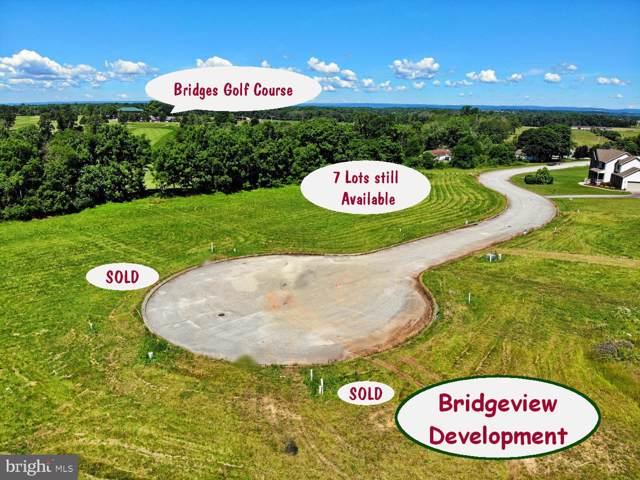 64 Bridgeview Drive, ABBOTTSTOWN, PA 17301 (#PAAD110290) :: Liz Hamberger Real Estate Team of KW Keystone Realty