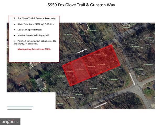 5975 Fox Glove Trail, LORTON, VA 22079 (#VAFX1108858) :: AJ Team Realty
