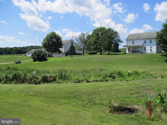 1012 Armstron Valley Road, HALIFAX, PA 17032 (#PADA118808) :: The Joy Daniels Real Estate Group