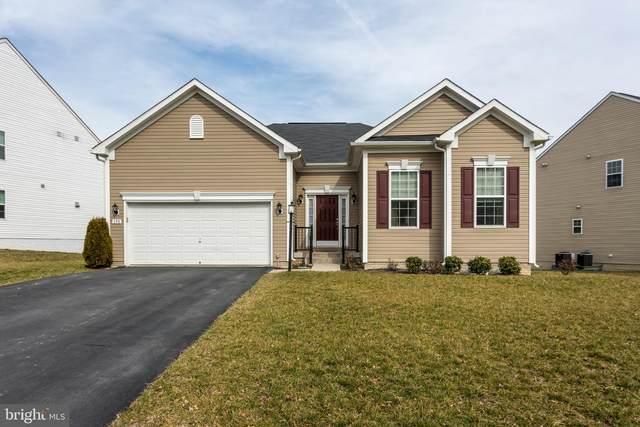 150 Merlot Drive, STEPHENSON, VA 22656 (#VAFV155472) :: Radiant Home Group