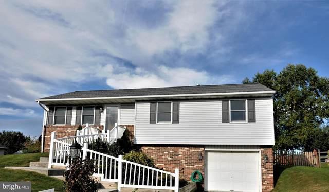 105 Little John Court, HANOVER, PA 17331 (#PAYK132524) :: The Joy Daniels Real Estate Group