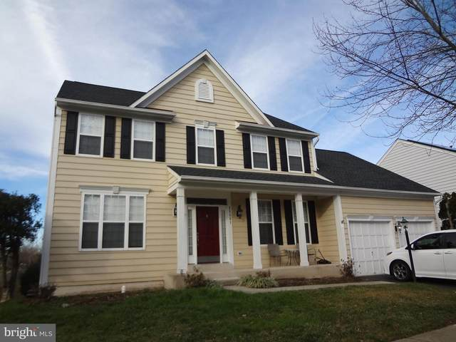 25561 Quits Pond Court, CHANTILLY, VA 20152 (#VALO402648) :: John Smith Real Estate Group