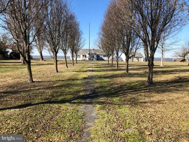 20514 Nanticoke Road, NANTICOKE, MD 21840 (#MDWC106886) :: The Licata Group/Keller Williams Realty