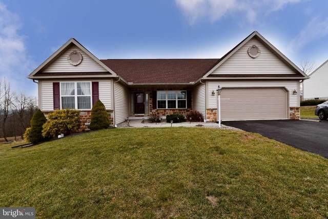 516 Stoney Run Road, POTTSVILLE, PA 17901 (#PASK129648) :: The Joy Daniels Real Estate Group