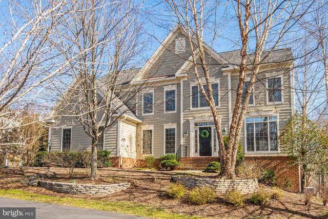 43265 Overview Place, LEESBURG, VA 20176 (#VALO402728) :: Cristina Dougherty & Associates