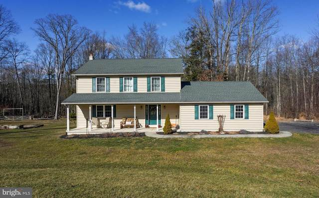 213 Mexico Road, PINE GROVE, PA 17963 (#PASK129650) :: Viva the Life Properties