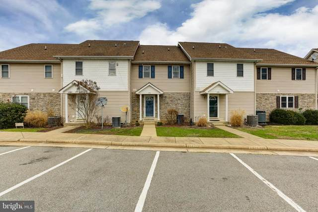 238 Lake Front Drive, MINERAL, VA 23117 (#VALA120528) :: Bruce & Tanya and Associates