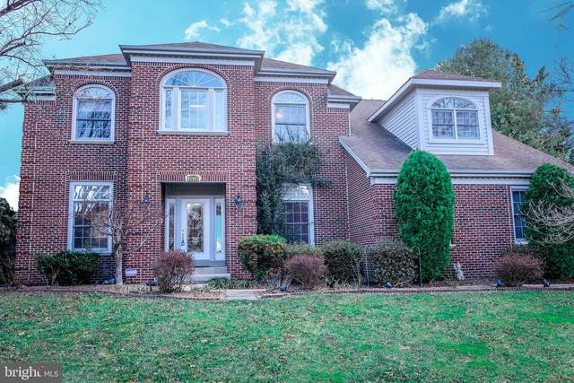 47400 Gallion Forest Court, STERLING, VA 20165 (#VALO402800) :: Pearson Smith Realty