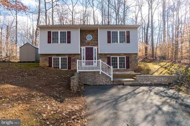 605 Eastover Parkway, LOCUST GROVE, VA 22508 (#VAOR135856) :: Larson Fine Properties
