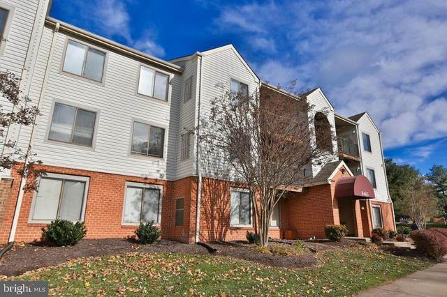8383 Buttress Lane #403, MANASSAS, VA 20110 (#VAMN138914) :: AJ Team Realty