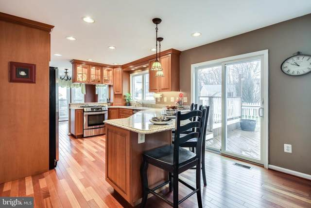 8525 Trail View Drive, ELLICOTT CITY, MD 21043 (#MDHW275104) :: The Miller Team