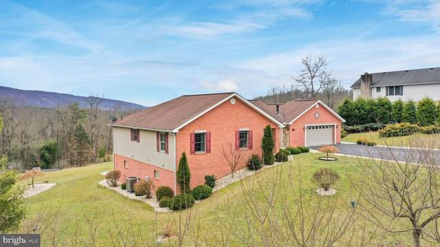 334 Francis Court, CUMBERLAND, MD 21502 (#MDAL133628) :: Bruce & Tanya and Associates