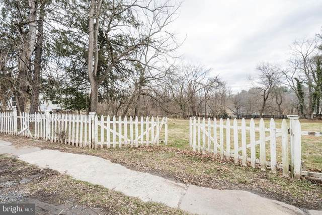 Lincoln Road, PURCELLVILLE, VA 20132 (#VALO402914) :: The Redux Group
