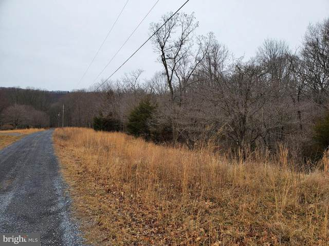 4.82 ACRES MAYNARD Drive, DELRAY, WV 26714 (#WVHS113756) :: Lee Tessier Team