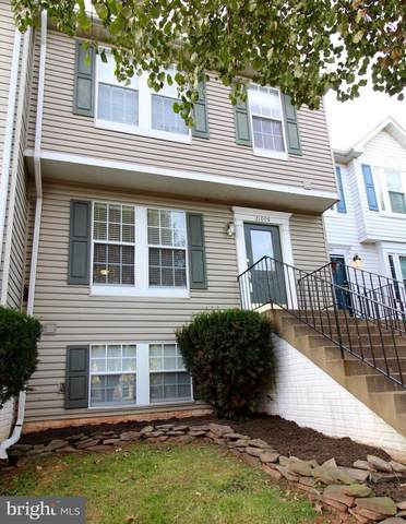21009 Lemon Springs Terrace, ASHBURN, VA 20147 (#VALO402936) :: The Miller Team