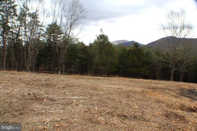 8.16 AC Payson Place, PETERSBURG, WV 26847 (#WVGT103140) :: Radiant Home Group
