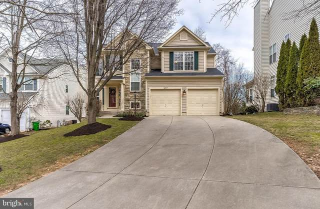 6417 Ripe Apple Lane, COLUMBIA, MD 21044 (#MDHW275194) :: Bruce & Tanya and Associates