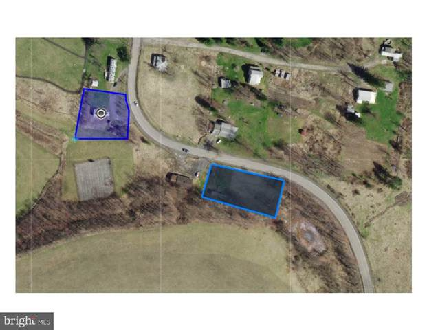 0.83 ACRES - ELK GARDEN Highway, ELK GARDEN, WV 26717 (#WVMI110898) :: Pearson Smith Realty