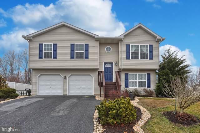 26 Horizon Drive, FREDERICKSBURG, PA 17026 (#PALN112356) :: The Joy Daniels Real Estate Group
