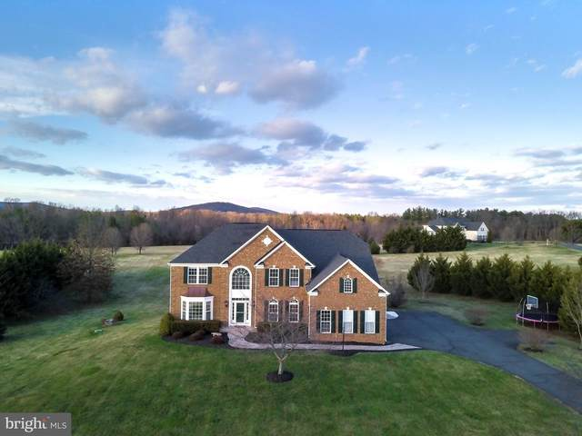36420 Dwyer Court, ROUND HILL, VA 20141 (#VALO402992) :: EXP Realty
