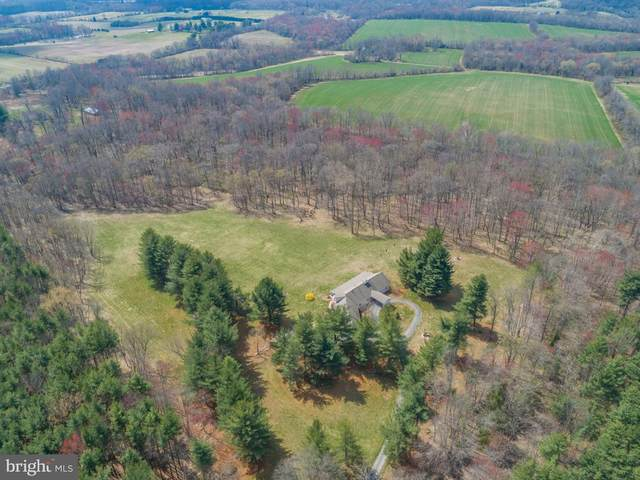 18820 Wasche Road, DICKERSON, MD 20842 (#MDMC695058) :: Tom & Cindy and Associates