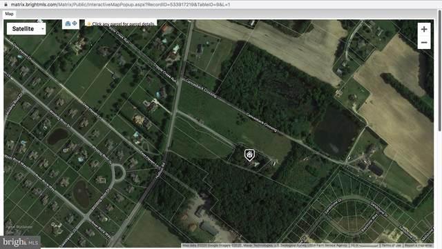 16109 Hudson Road, MILTON, DE 19968 (#DESU155570) :: Atlantic Shores Sotheby's International Realty