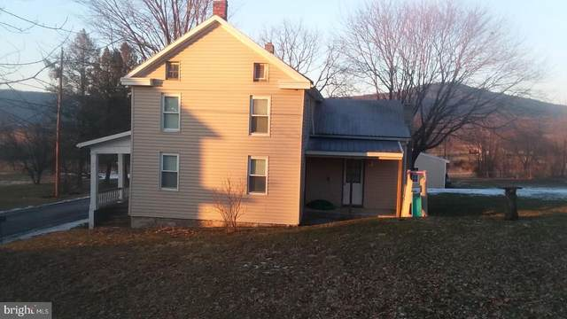 22284 Main St., DOYLESBURG, PA 17219 (#PAFL171120) :: The Joy Daniels Real Estate Group