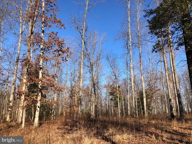 Elk View Ct-88, MINERAL, VA 23117 (#VALA120580) :: Pearson Smith Realty