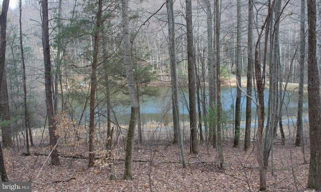 Lost Lakeview Rd Lot Lost Lakeview Rd, MADISON, VA 22727 (#VAMA108168) :: Cristina Dougherty & Associates