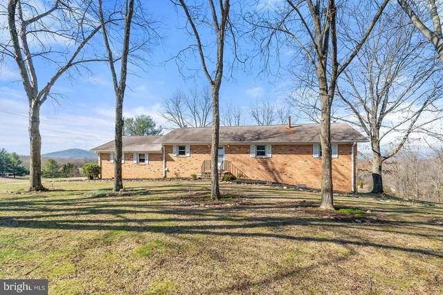 401 Seven Ponds Road, AMISSVILLE, VA 20106 (#VARP107108) :: Pearson Smith Realty