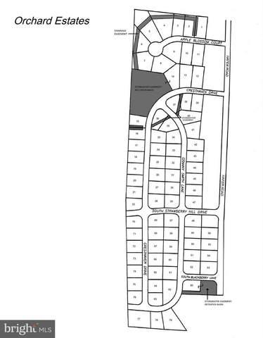 269 Cresthaven Drive, FAYETTEVILLE, PA 17222 (#PAFL171152) :: Crossman & Co. Real Estate