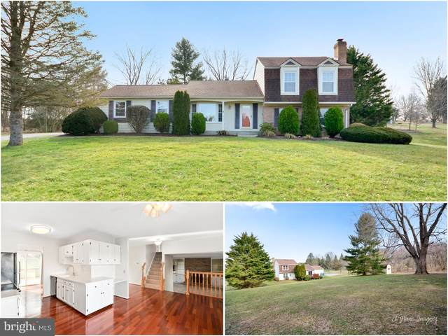 7305 Countryside Drive, MIDDLETOWN, MD 21769 (#MDFR259698) :: RE/MAX Plus