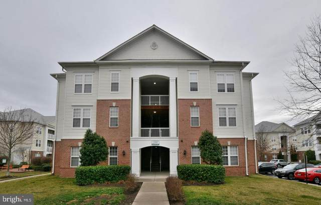 22687 Blue Elder Terrace #203, BRAMBLETON, VA 20148 (#VALO403218) :: Bic DeCaro & Associates