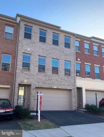 42249 Marble Canyon Terrace, BRAMBLETON, VA 20148 (#VALO403238) :: John Smith Real Estate Group