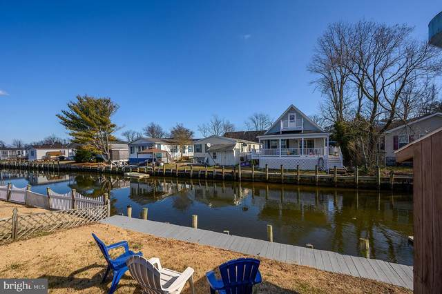 36984 Blue Teal Road, SELBYVILLE, DE 19975 (#DESU155792) :: Atlantic Shores Sotheby's International Realty