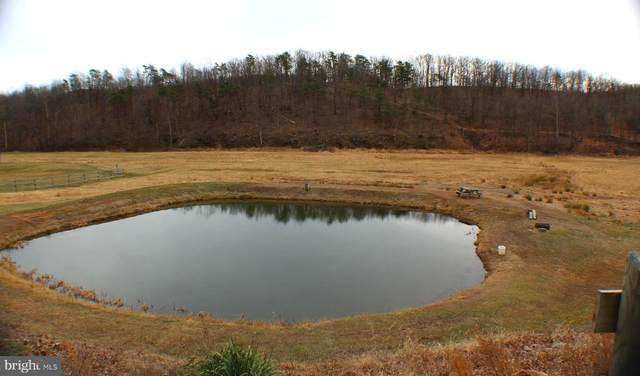 15.76 Squirrel Hollow, LAHMANSVILLE, WV 26731 (#WVGT103148) :: Radiant Home Group