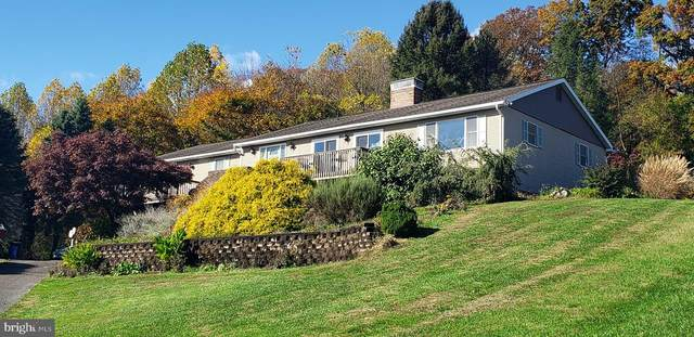 14 Knollwood Drive, READING, PA 19608 (#PABK354154) :: RE/MAX Main Line