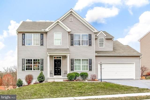16 Larch Lane, ENOLA, PA 17025 (#PACB121366) :: The Joy Daniels Real Estate Group