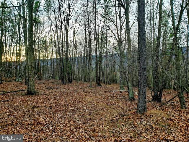 Happy Valley Road, ORKNEY SPRINGS, VA 22845 (#VASH118374) :: The Sky Group