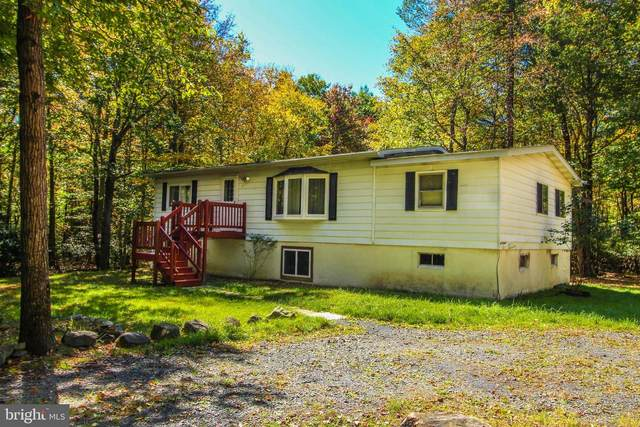 141 Spring Terrace, LONG POND, PA 18334 (#PAMR105838) :: The Team Sordelet Realty Group