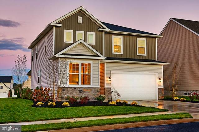 Chestnut Drive- Pearl, CULPEPER, VA 22701 (#VACU140658) :: Bruce & Tanya and Associates