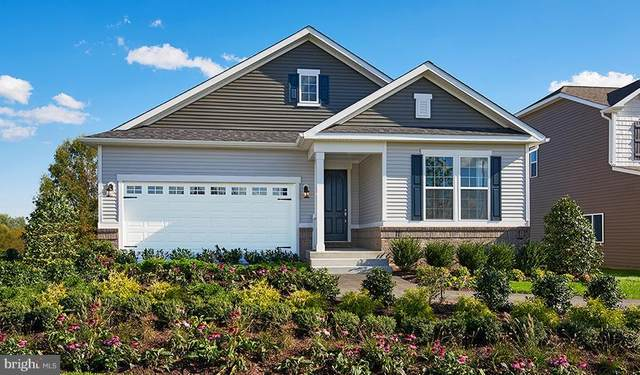 Town Run Lane- Onyx, STEPHENS CITY, VA 22655 (#VAFV155688) :: Debbie Dogrul Associates - Long and Foster Real Estate