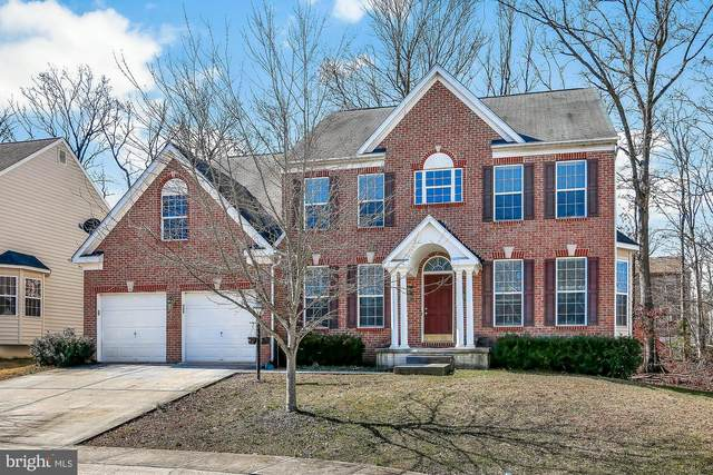 8 Paca Place, ELKTON, MD 21921 (#MDCC168036) :: The Licata Group/Keller Williams Realty