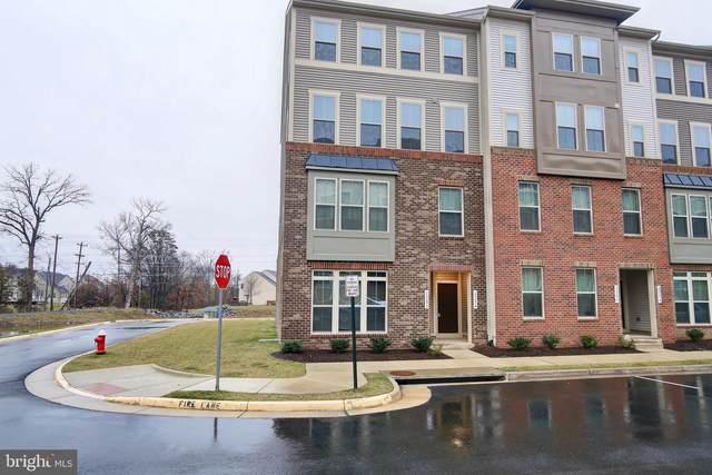 25294 Trumpet Vine Terrace, ALDIE, VA 20105 (#VALO403406) :: Eng Garcia Properties, LLC