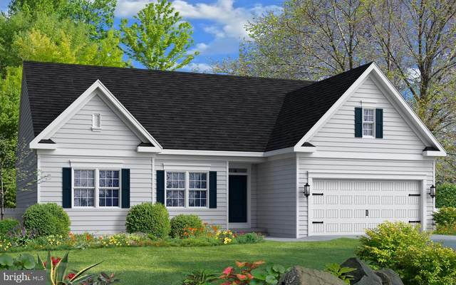 3 Middle Road, ELKTON, MD 21921 (#MDCC168038) :: The Putnam Group