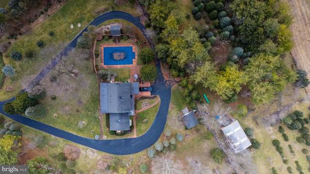104 Dutton Place, WINCHESTER, VA 22601 (#VAFV155696) :: Gail Nyman Group